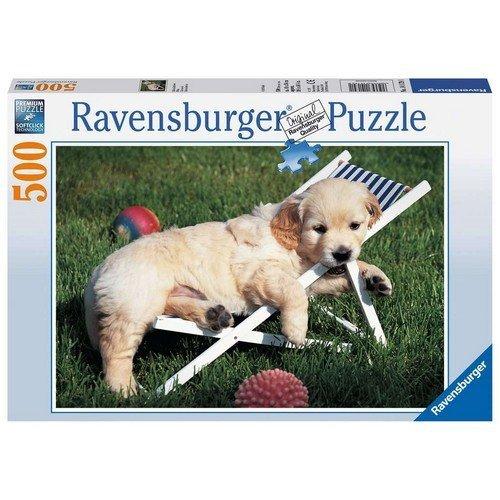 Puzzle 500: Cucciolo di Golden Retriever  (Lingua: Multilingua - Stato: Nuovo)